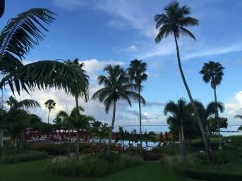 Beautiful Nevis