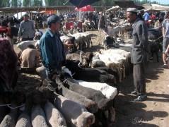 The animal market in Kashgar.