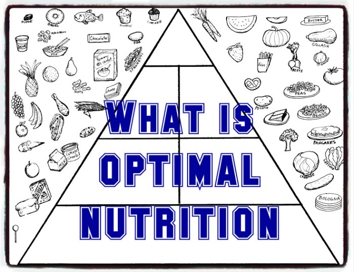 what is optimal nutrition