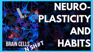 change your habits with neuroplasticity