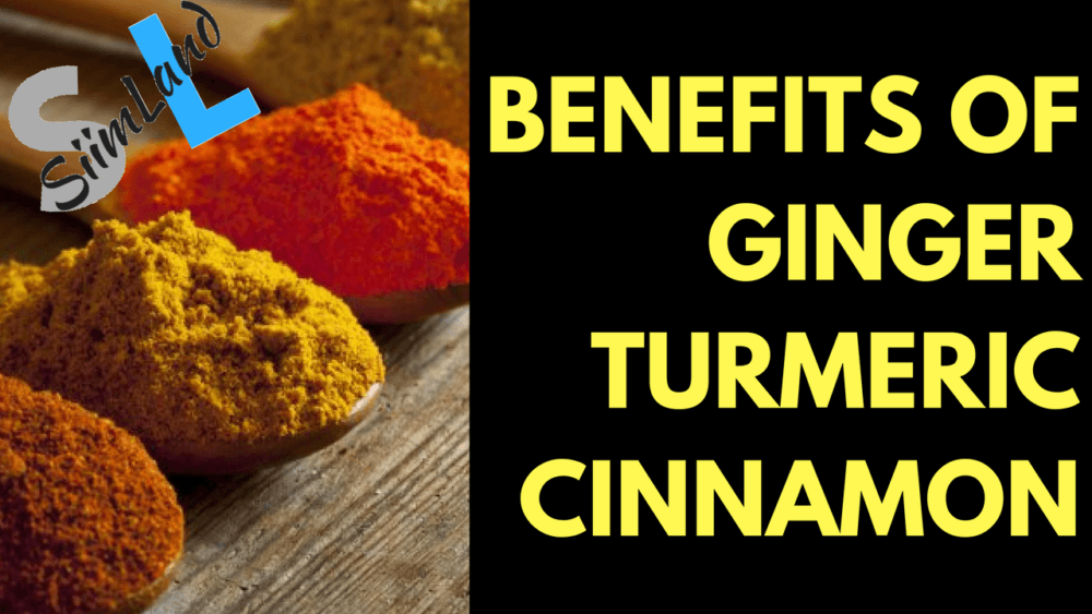 3 Super Foods That Reduce Inflammation - Benefits of Ginger, Turmeric and  Cinnamon - Siim Land