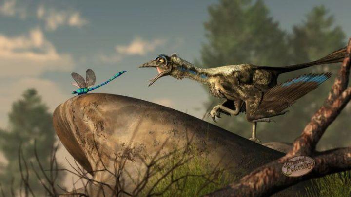 Archaeopteryx, Antara Burung dan Dinosaurus