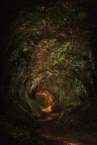 Tout est possible - Et sortir du tunnel