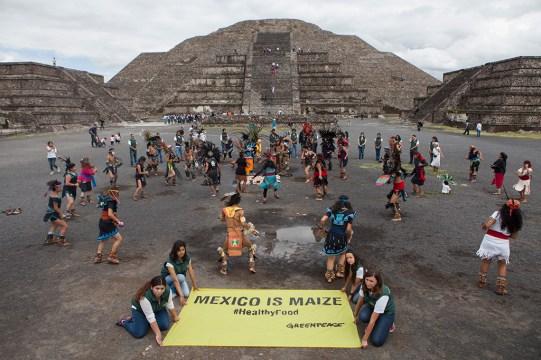 SEPTIEMBRE: Activistas de Greenpeace MŽxico y danzantes prehisp‡nicos conmemoran el d'a internacional del ma'z en Teotihuac‡n. (Prometeo Lucero) Greenpeace MŽxico | https://goo.gl/2Qqdn1