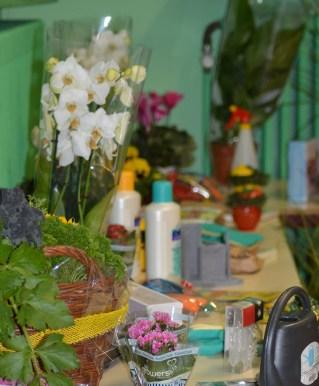 2015-10-02 - Façades fleuries (11) - Michel F