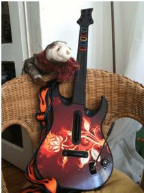 wiesel_fireflower200