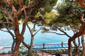 pins-roches-blanches-hotel-5-etoiles-cassis
