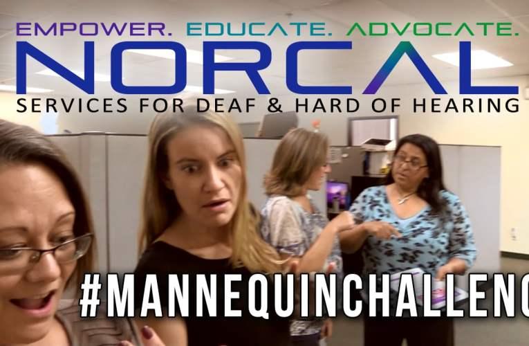 NorCal Mannequin Challenge!