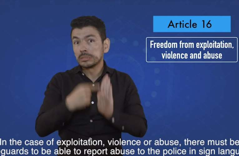 2. articles 16 Freedom from exploitation, violence and abuse