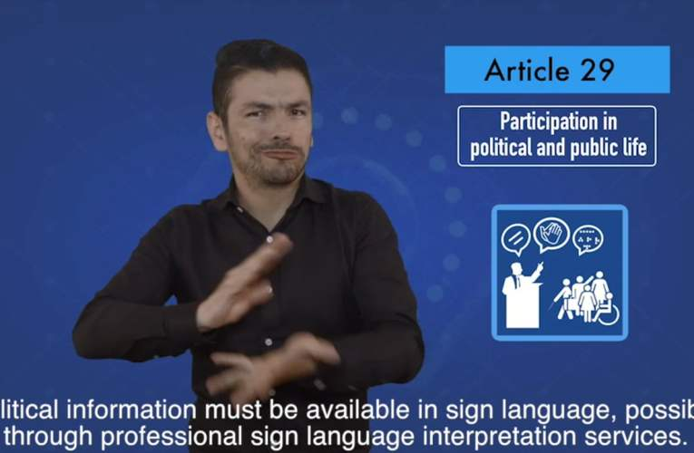 2. articles 29 Participation in political and public life