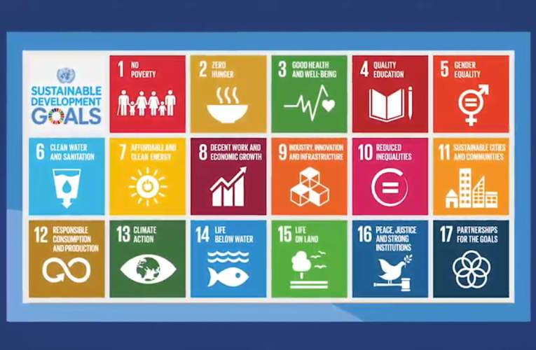3. Background: Sustainable Development Goals