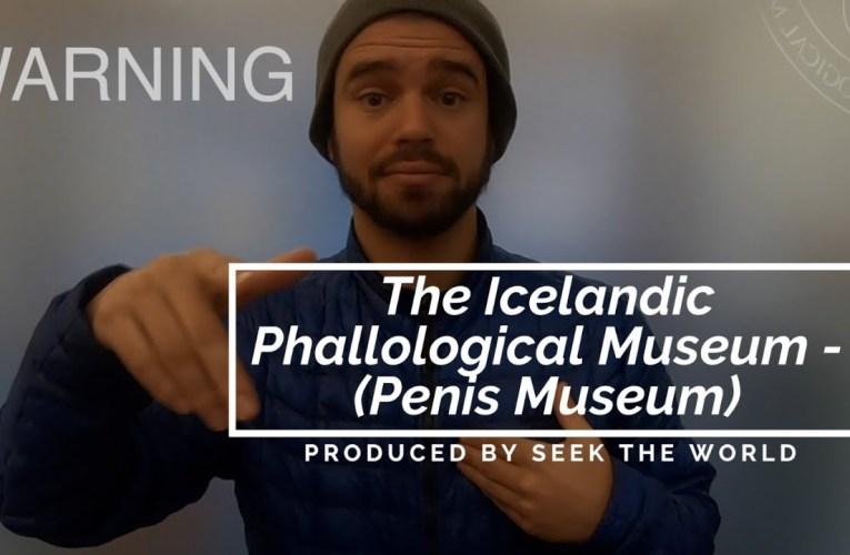 The Icelandic Phallological Museum –  (Penis Museum)