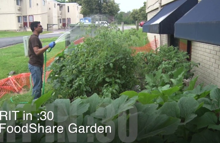 RIT in :30 – FoodShare Garden