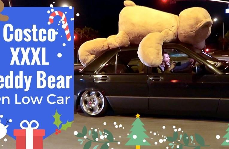 Costco XXXL Teddy Bear on Low Car