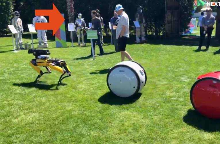 Jeff Bezos with dog, robot-beer pong, vest for deaf people and other cool things from MARS 2018 conference!