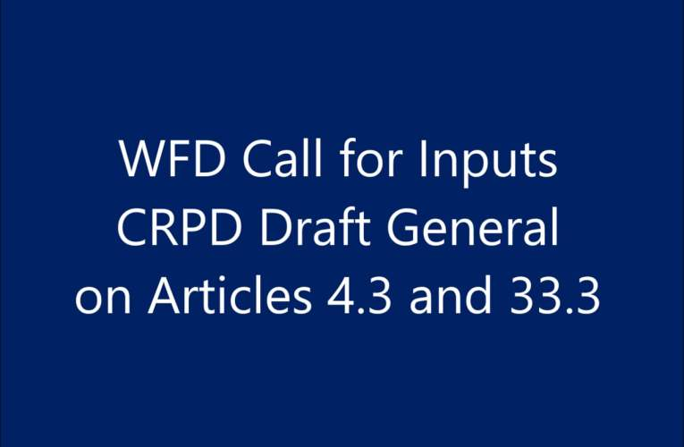 Call for WFD Inputs – CRPD Draft General Comments on Articles 4.3 and 33.3