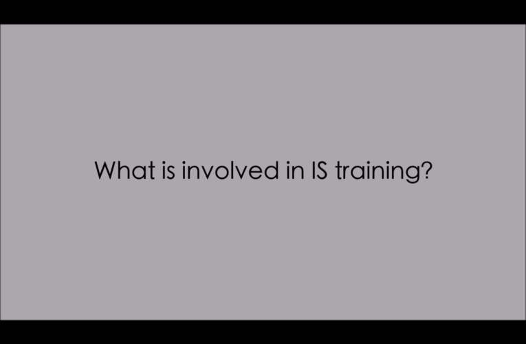 7. What is involved in IS training? (WASLI/WFD FAQ on IS)