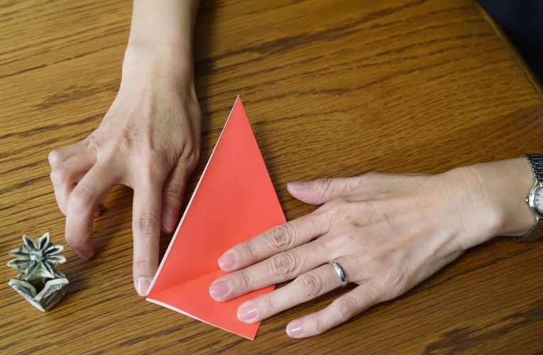 Let's learn Origami with Junko-e-News-May 2019