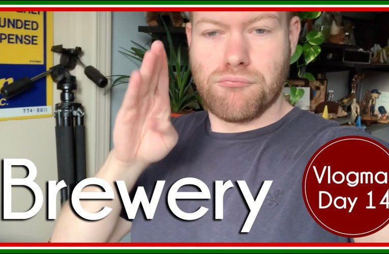 Todoist and Brewery | Vlog | Vlogmas