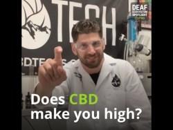 Deaf Ecosystem Spotlight - CBD Technologies - Convo