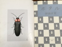Minami's book describing life cycle and rearing of Japanese fireflies