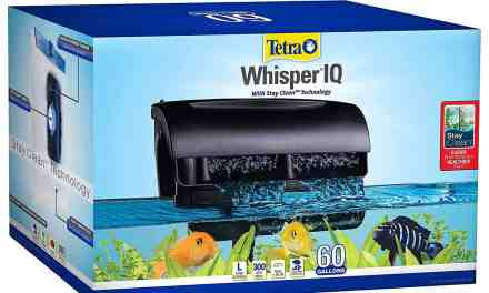 Whisper IQ Power Filter for Aquariums   REVIEW