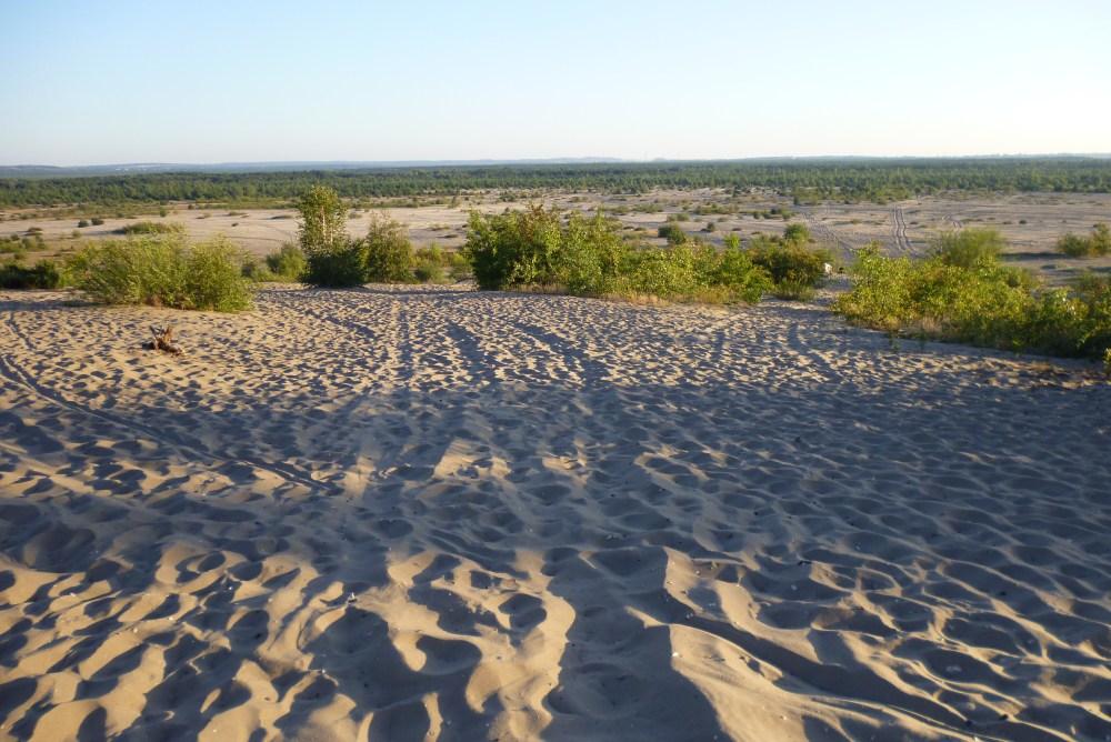 Desert in Poland?! Yes, it is! Polish Sahara - Pustynia Błędowska (1/4)