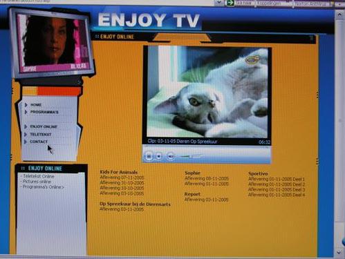 Onze televisiesterren