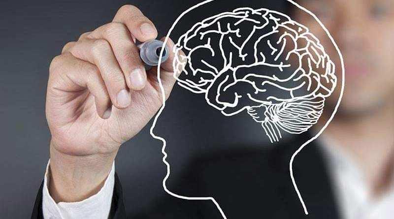 FP draw brain