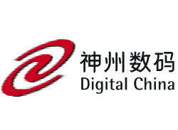 Digital China Group