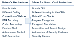 Nature's security features and chip design