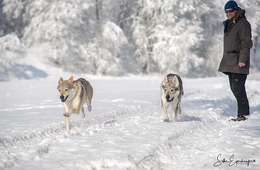 Schneetag in Bayern- snow day in Bavaria :)