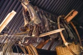 Wild boar bones are kept as trophys