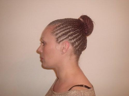Braid Upstyle (Side)