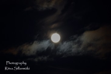Blue moon 2015 (24 of 49)