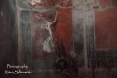 Herculaneum (47 of 142)