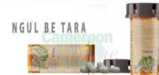 Le Dr Peyou propose « Ngul Be Tara »