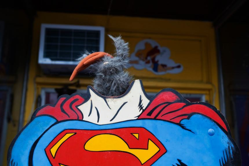 Flopsy the Jackalope as Superman in Metropolis, Illinois.