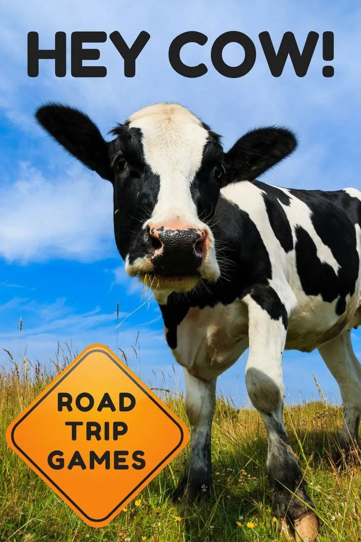 hey cow road trip car game silly america