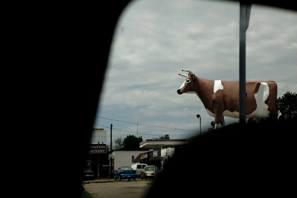 Convenience Store Cow on a Roof in Ypsilanti, Michigan