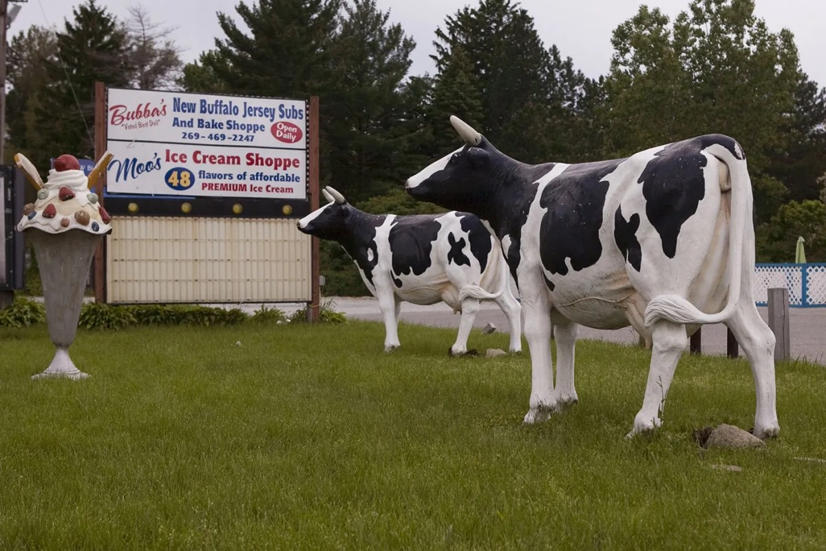 Large Cows and Ice Cream Cone in New Buffalo, Michigan