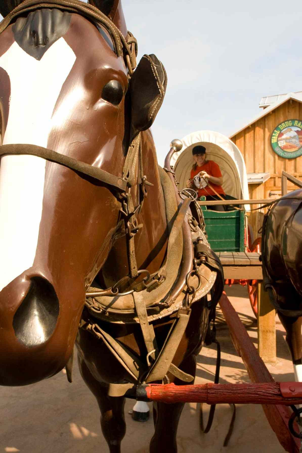 Horse and Carriage Replica at Wall Drug Store in Wall, South Dakota