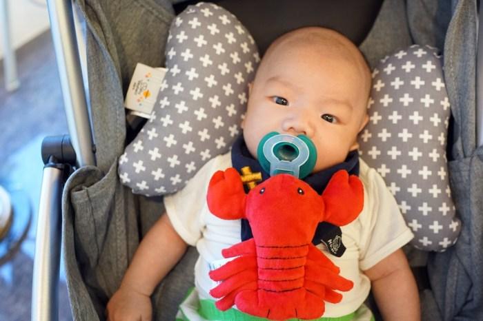 育兒│美國 Nookums 安撫奶嘴玩偶。嬰兒界的龍蝦哥,半夜不怕找不到奶嘴!