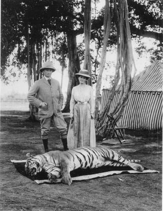 tiger hunting expedition british raj 1903