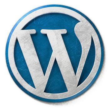 WordPress Blue and White Logo