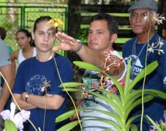 Las orquídeas son consideraras por muchos las flores más bellas de la creación, lo que contrasta con su sencillez y colores propios: rosa, rojo, blanco, amarillo, verde... el 11 de Octubre de 2010, Pinar del Río, Cuba. Foto: Calixto N. Llanes/Juventud Rebelde (CUBA)