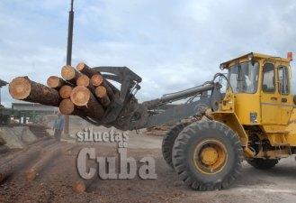 """Una grúa carga los maderos que son procesados en el Aserrío """"Combate Las Tenerías"""", el 14 de Enero de 2011, Pinar del Río, Cuba. Foto: Calixto N. Llanes/Juventud Rebelde (CUBA)"""