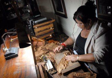 La torcedora Leopoldina Gutiérrez (La China), elaboró los puros especialmente para la ocasión, el 11 de Noviembre de 2011, La Habana, Cuba. Foto: Calixto N. Llanes (CUBA)