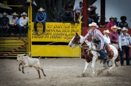 Vaquero compite en el enlace de terneros en la final del Campeonato Nacional de Rodeo entre Villa Clara y Sancti Spiritus, durante la Feria Internacional Agroindustrial Alimentaria (FIAGROP) de Rancho Boyeros el martes 18 de marzo de 2014 en La Habana, Cuba. FOTO de Calixto N. Llanes/Juventud Rebelde (CUBA)