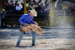 Vaquero compite en el enlace de terneros en el Torneo Internacional de Rodeo y Coleo, durante la Feria Internacional Agroindustrial Alimentaria (FIAGROP) de Rancho Boyeros el viernes 21 de marzo de 2014 en La Habana, Cuba. FOTO de Calixto N. Llanes/Juventud Rebelde (CUBA)